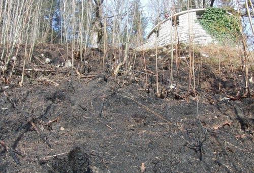 Flächenbrand nähe Kalvarienberg am 22. November 2011