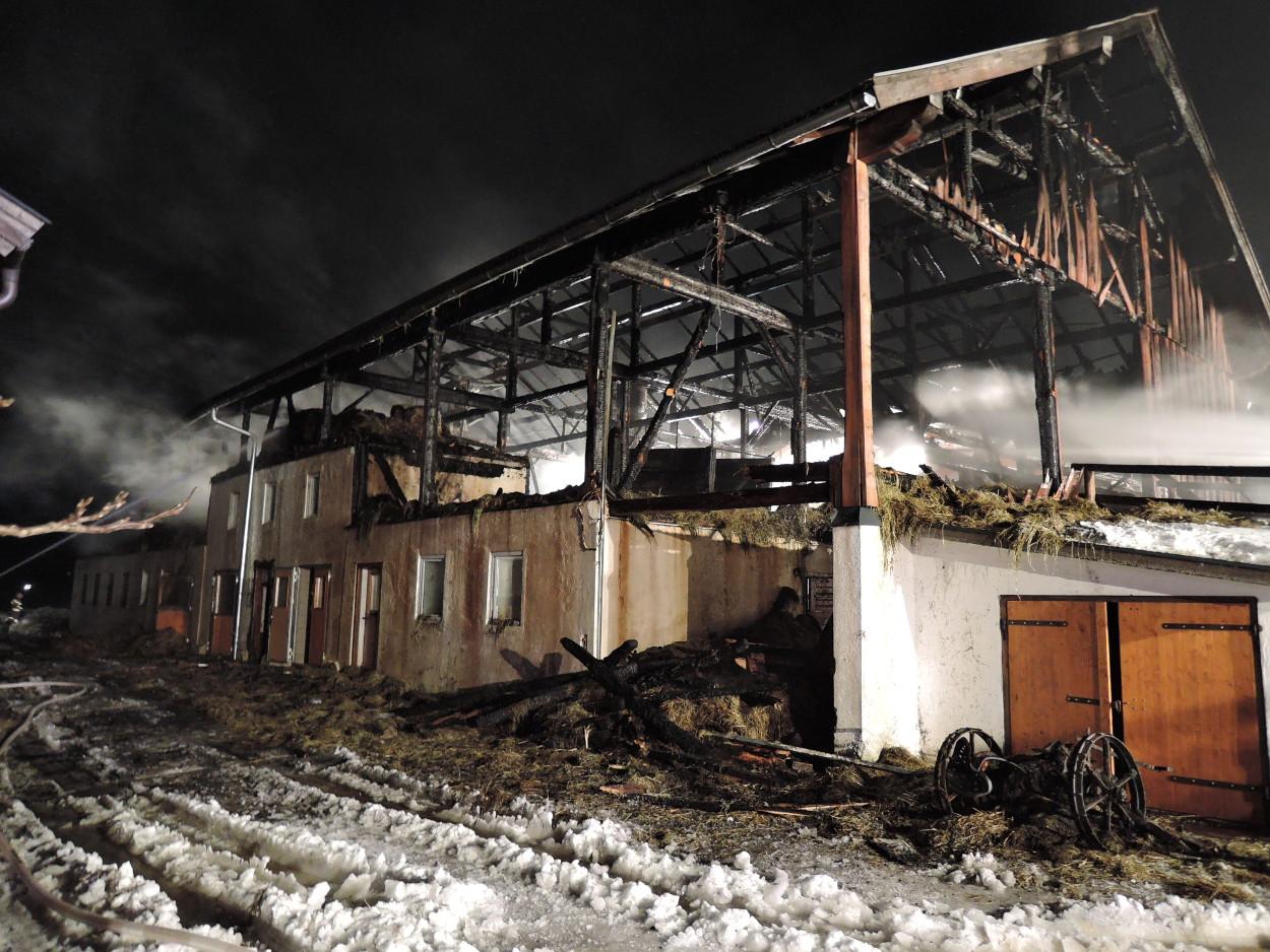 Brand Nusserbauer, am 19. Februar 2015